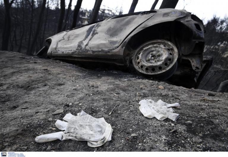 Φωτιά: Εικόνες που κόβουν την ανάσα μετά τον όλεθρο | Pagenews.gr