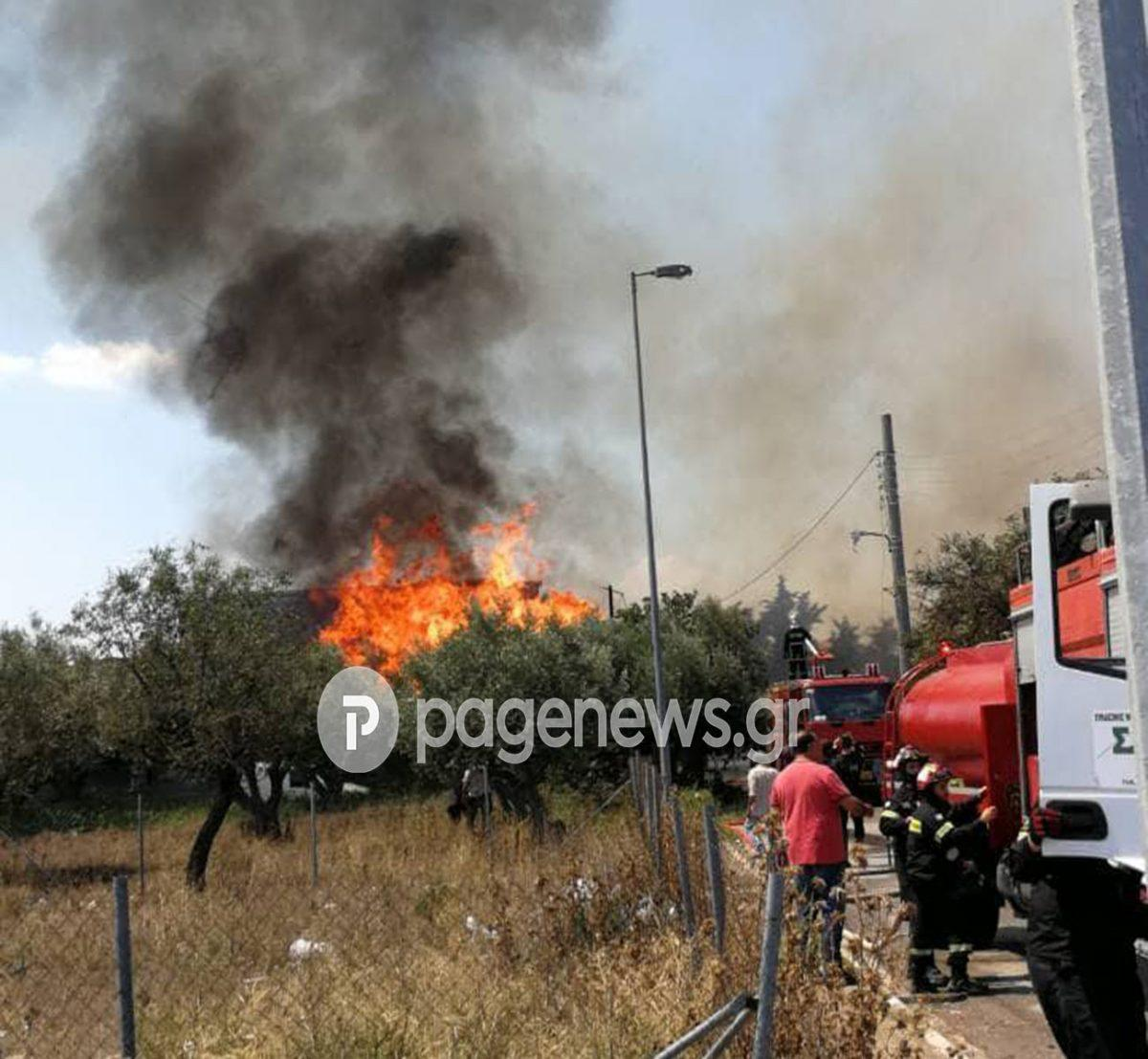 Φωτιά Μενίδι: Υπό μερικό έλεγχο η πυρκαγιά | Pagenews.gr