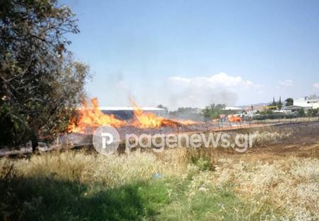 Αναζωπύρωση της φωτιάς στο Μενίδι   Pagenews.gr