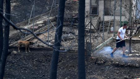 Μάτι: Τις συνθήκες εξάπλωσης της πυρκαγιά απαριθμεί το Εθνικό Αστεροσκοπείο Αθηνών | Pagenews.gr