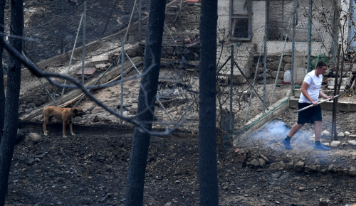 Πληγέντες: Ζητούνται εθελοντές όλων των ειδικοτήτων για το Μάτι | Pagenews.gr