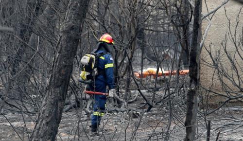 Πυρκαγιές Αττικής: Σοκάρουν οι ιατροδικαστές – «Έχουμε και μόνο τμήματα από ανθρώπινα σώματα»   Pagenews.gr