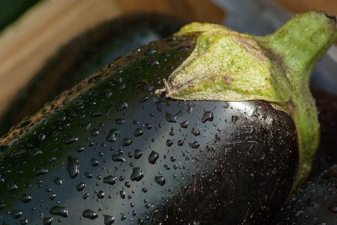 Η συνταγή της ημέρας: Γρήγορα και ελαφριά μελιτζανομπουρεκάκια | Pagenews.gr