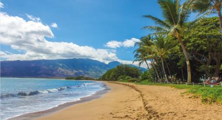 Χαβάη: Έρχεται απαγόρευση στα αντηλιακά   Pagenews.gr