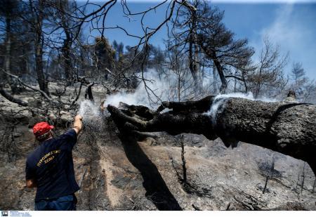 Φωτιά Εύβοια: Σε ύφεση η πυρκαγιά στον δήμο Δίρφης – Μεσσαπίων | Pagenews.gr