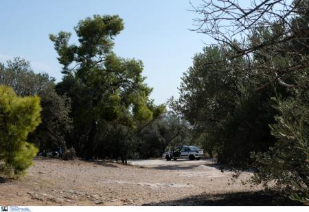 ΕΓΚΛΗΜΑ ΣΤΟΥ ΦΙΛΟΠΑΠΠΟΥ : Αυτοί είναι οι συλληφθέντες (pic) | Pagenews.gr