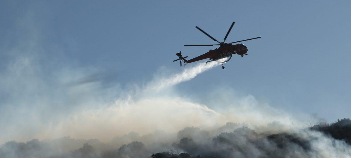ΦΩΤΙΑ ΤΩΡΑ: Πυρκαγιά σε δασική έκταση στην Αλεξανδρούπολη | Pagenews.gr
