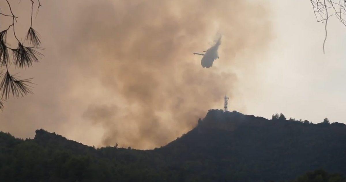 ΦΩΤΙΑ ΤΩΡΑ: Μάχη με τις φλόγες σε δύο μέτωπα στην Ηλεία (vid) | Pagenews.gr