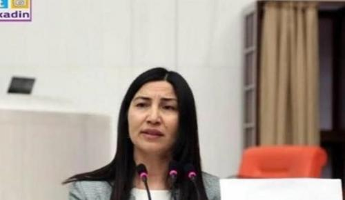 Τουρκάλα πρώην βουλευτής πέρασε παράνομα τον Έβρο και ζήτησε άσυλο | Pagenews.gr