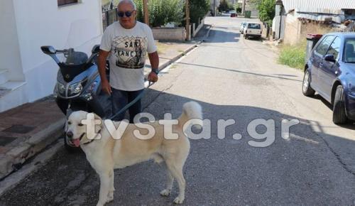 Στυλίδα: Κάτοικος «έφαγε» πρόστιμο 500 ευρώ επειδή ο σκύλος του γαβγίζει (pics)   Pagenews.gr