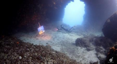 The Underwater Gallery: Η πρώτη στον κόσμο υποθαλάσσια έκθεση φωτογραφίας «με μια ανάσα» (vids) | Pagenews.gr