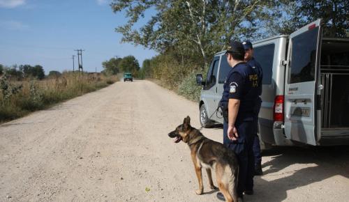 Δολοφονία Έβρος: Ολοκληρώθηκε η νεκροτομή των τριών γυναικών που εντοπίστηκαν νεκρές στο Πραγγί Διδυμοτείχου | Pagenews.gr