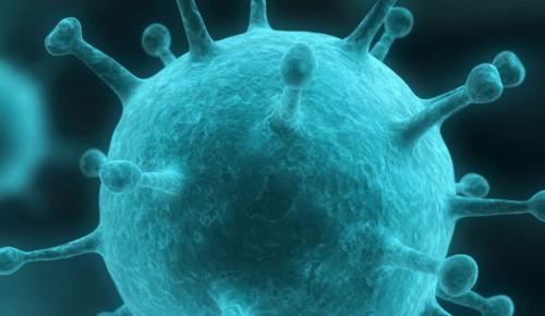Έρευνα για τον καρκίνο: Ανακάλυψη Βρετανών επιστημόνων για «το παράδοξο του καρκίνου» | Pagenews.gr