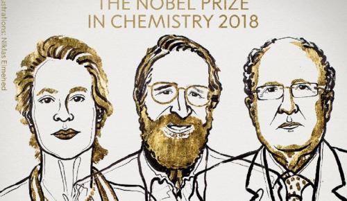 Νόμπελ Χημείας: Βραβεύτηκαν τρεις επιστήμονες, ανάμεσά τους μία γυναίκα (pics&vid)   Pagenews.gr