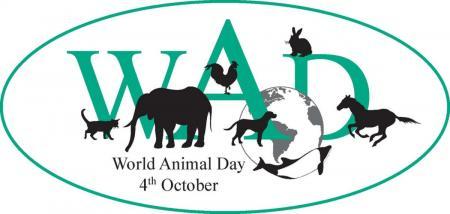 4 ΟΚΤΩΒΡΙΟΥ: Παγκόσμια Ημέρα των Ζώων – Εκδηλώσεις στην Αθήνα | Pagenews.gr