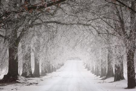 Καιρός : Έκτακτο δελτίο επιδείνωσης – Χιόνια, βροχές και καταιγίδες από το βράδυ | Pagenews.gr