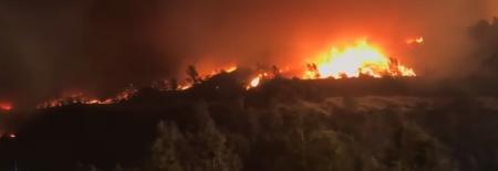 Πυρκαγιά Καλιφόρνια: Μεγάλη φωτιά σε εξέλιξη – Φόβοι για νεκρούς (pics&vid)   Pagenews.gr