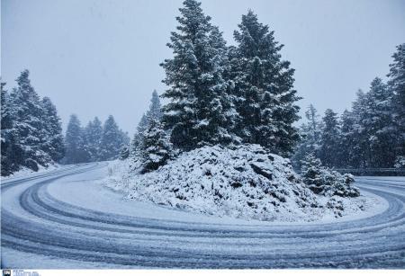 Πρώτα χιόνια: Ποιες περιοχές ντύθηκαν στα λευκά (pics) | Pagenews.gr