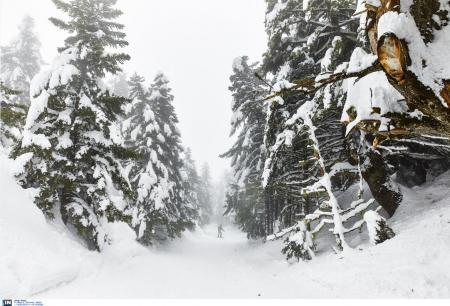 Πρόγνωση καιρού: Έρχεται πολικό ψύχος διαρκείας – Που θα χιονίσει | Pagenews.gr