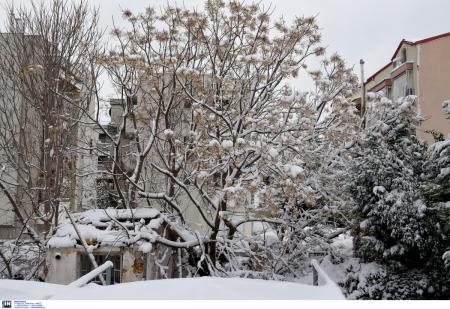 Καιρός (14/1/19): Η πρόγνωση για την Δευτέρα 14 Ιανουαρίου 2019 | Pagenews.gr