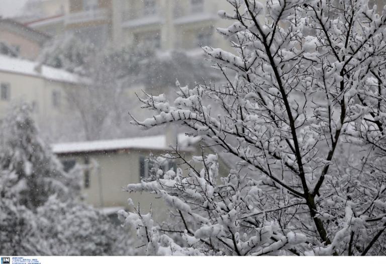 Πρόγνωση καιρού: Χιονοπτώσεις και τσουχτερό κρύο – Τι προβλέπει η ΕΜΥ | Pagenews.gr