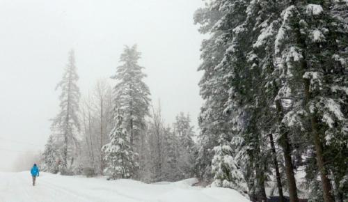 Ωκεανίς: Έρχονται θερμοκρασίες Σιβηρίας – Πότε θα «χτυπήσει» η κακοκαιρία | Pagenews.gr