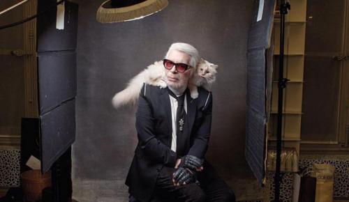Karl Lagerfeld: Η παραχαϊδεμένη γάτα Choupette μάλλον θα κληρονομήσει τον μπαμπά της | Pagenews.gr