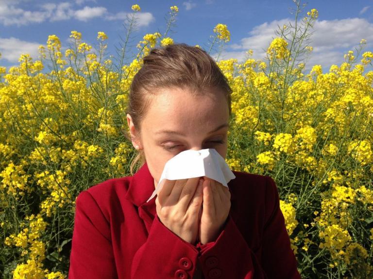 Γύρη και αλλεργίες: Πώς θα προστατευτείτε | Pagenews.gr