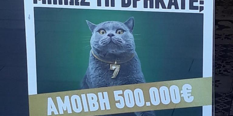 ΟΠΑΠ: Κυνήγι σε όλη την Ελλάδα για μία γάτα με αμοιβή 500.000 ευρώ   Pagenews.gr
