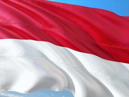 Ινδονησία: Ο Τζόκο Βιντόντο κέρδισε τις προεδρικές εκλογές | Pagenews.gr