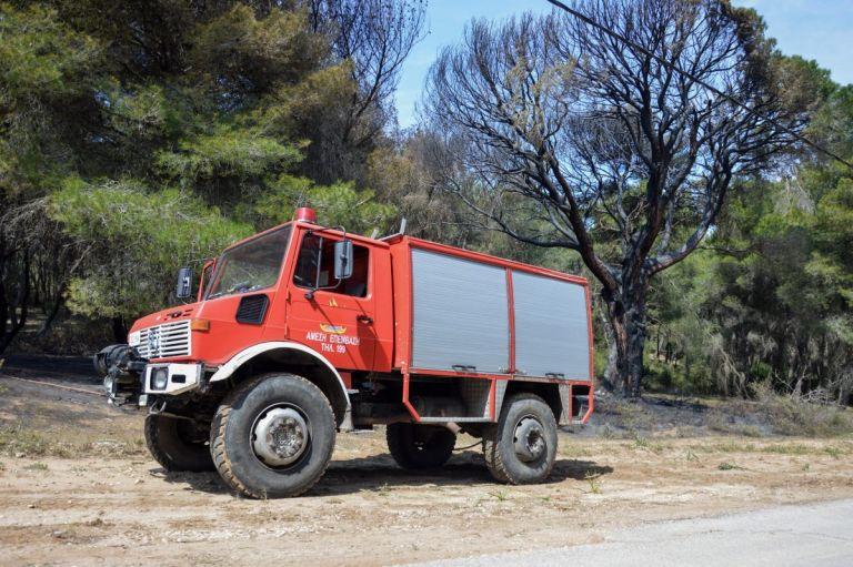 Φωτιά τώρα: Πυρκαγιά σε δασική έκταση στα Μέγαρα   Pagenews.gr