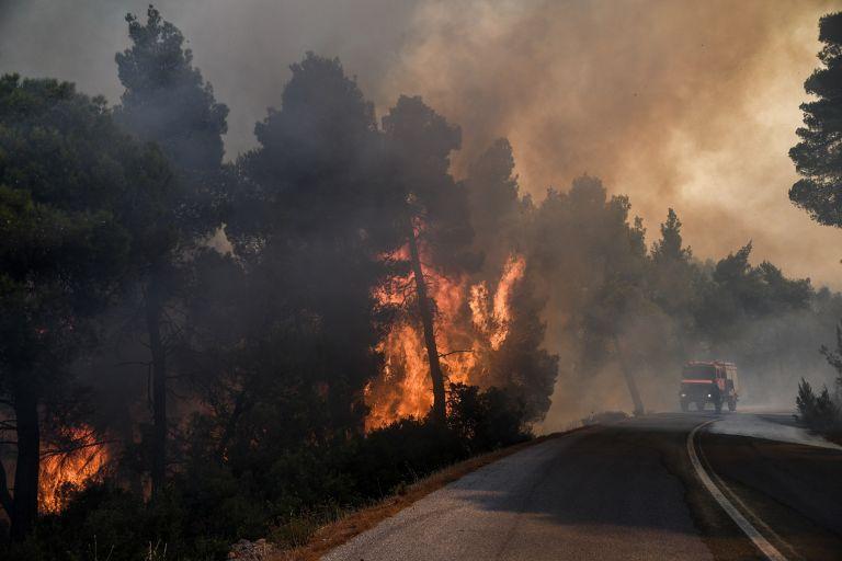Αποτέλεσμα εικόνας για Φωτιά Εύβοια