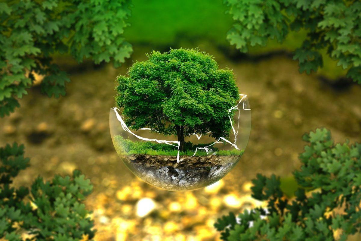 Παγκόσμια μέρα γης