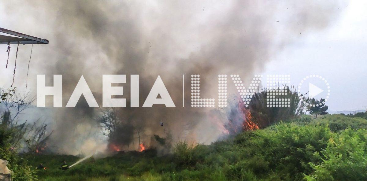 Φωτιά στην Ηλεία: Υπό μερικό έλεγχο η πυρκαγιά